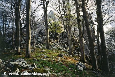 In Samarske stijene