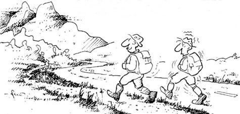 (karikatura: Senaid Serdarević)